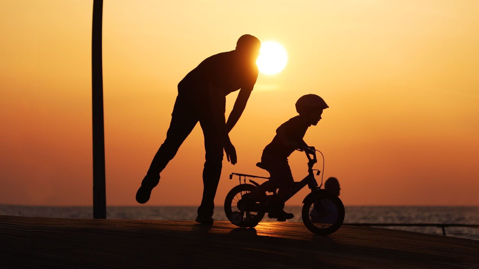 Dad, son, bike
