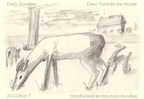 Deer Outside the House