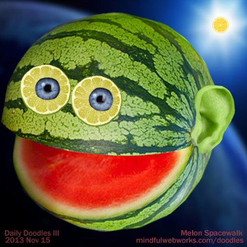 Melon Spacewalk