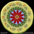 Fruit Salad Yantra