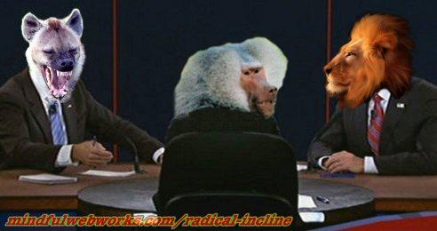 Animals debate
