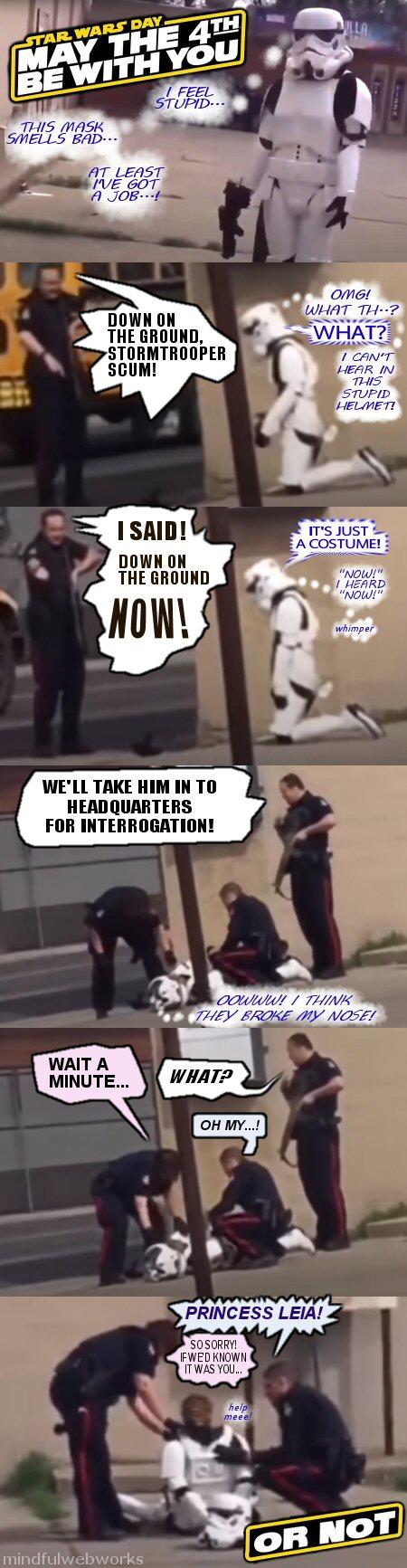 Cops arrest 'Stormtrooper'
