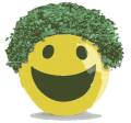 Chia Smiley