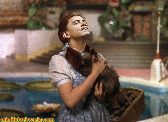 O & Toto